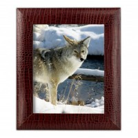 Brown Crocodile Embossed Leather 8″ x 10″ Photo Frame